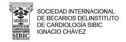 SIBIC Internacional Asociación Civil.